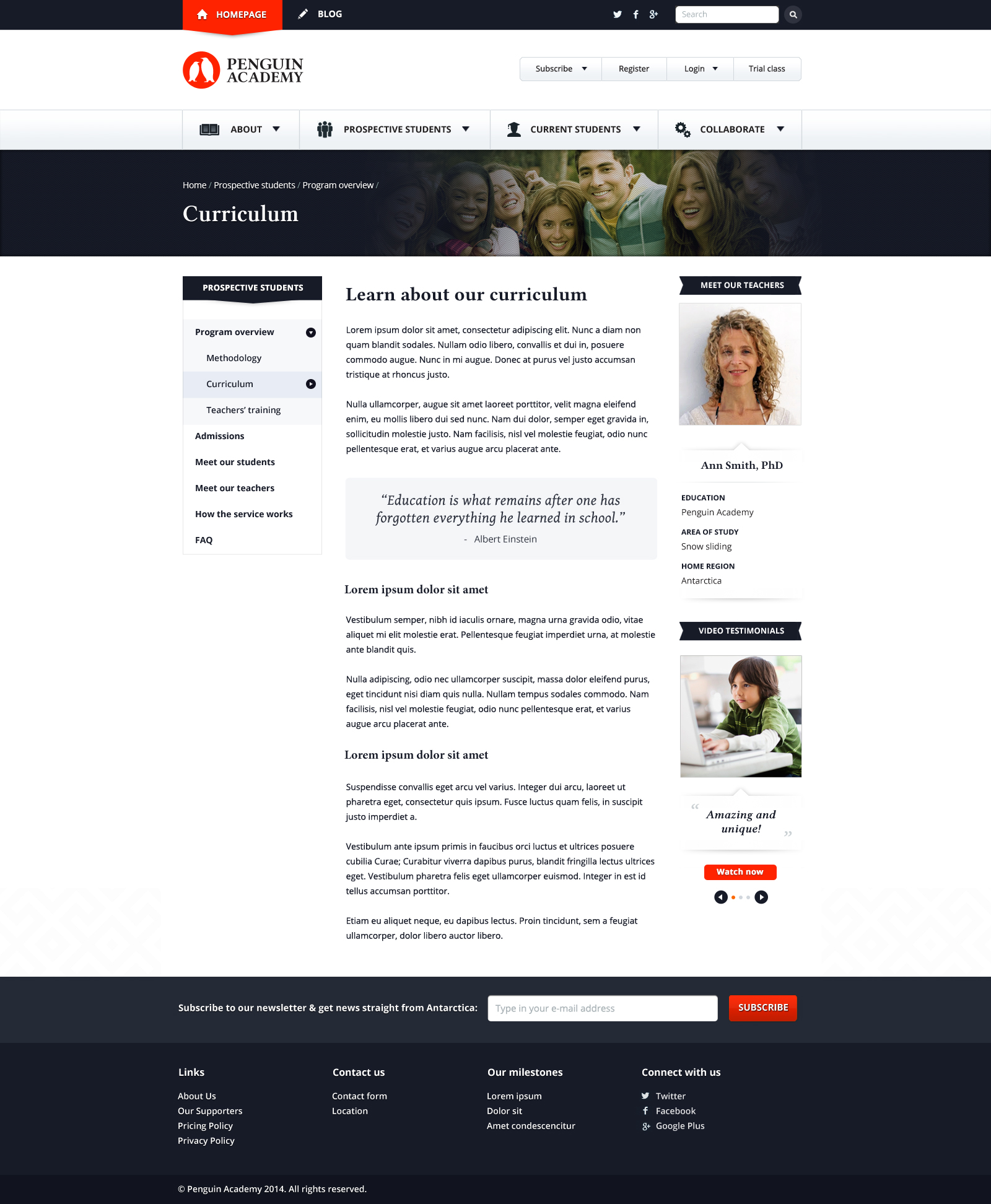 Penguin Academy Website Design