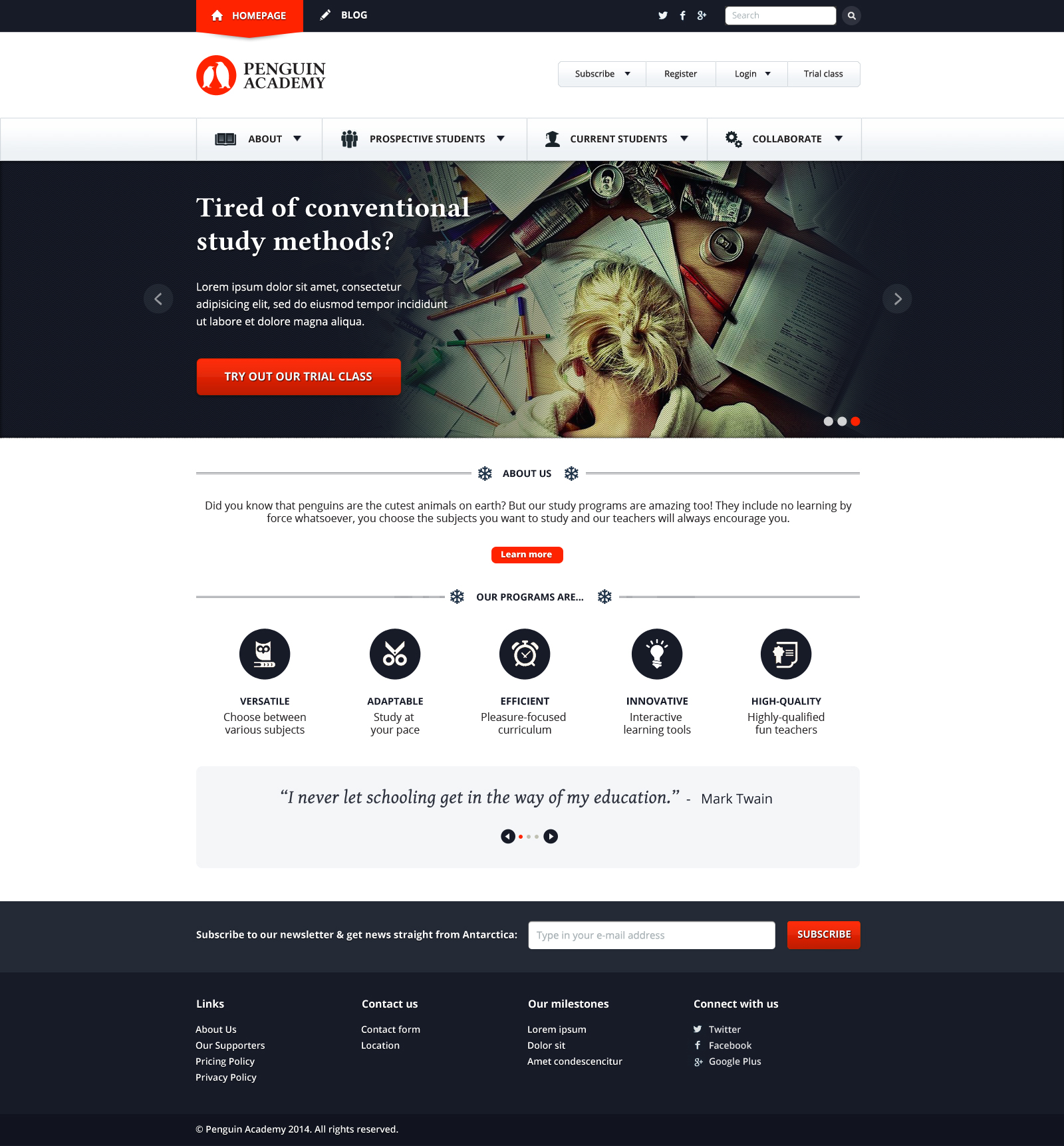 Penguin Academy / Website – Cubio Visual Solutions | Quality Graphic ...